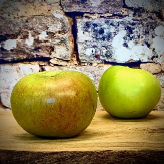 English Bramley Apples