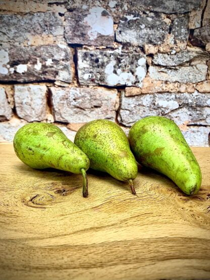 British Conference Pears