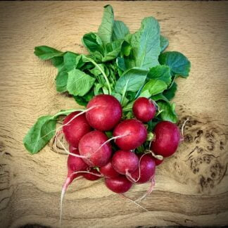 British Bunch of Radishes